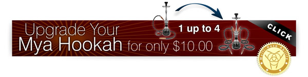 For a limited time, upgrade your Mya Hookah to 2-Hoses or 4-Hoses for only $10 by taking advantage of the Mya Hookah Multiplier Effect Promotion.
